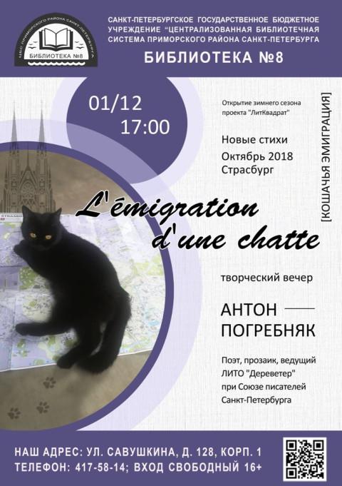 8 2018.12.01. Погребняк Антон Афиша